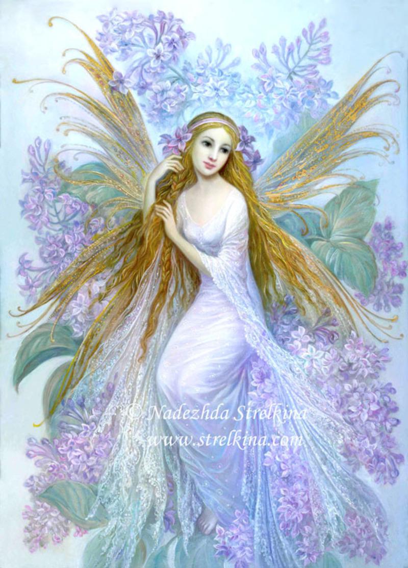 lilac_fairy.jpg